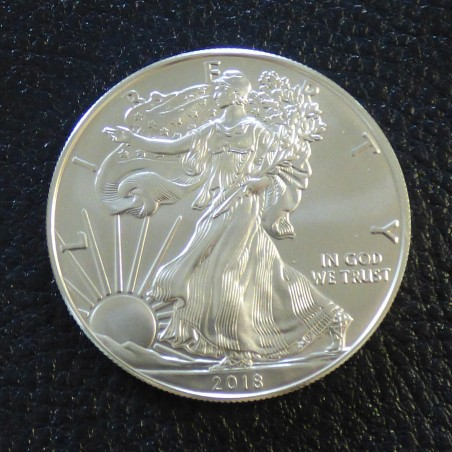 US 1$ Silver Eagle 1 oz silver 99.9% various years