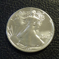 US 1$ Silver Eagle 1990 1oz...
